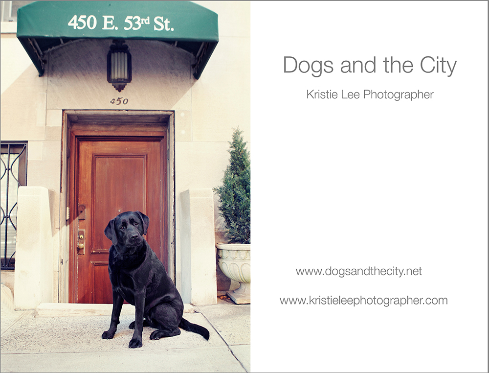 Dogsandthecity Kristielee
