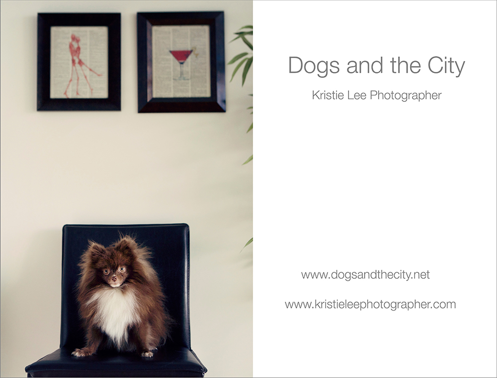 Dogs and the City Frankie Kristie Lee Photographer