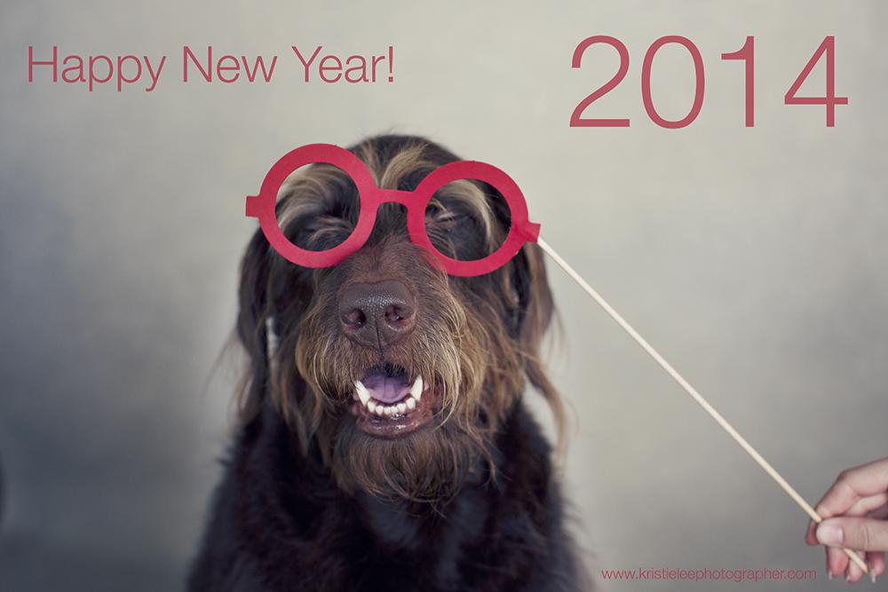 Kristie Lee Photographer happy new year