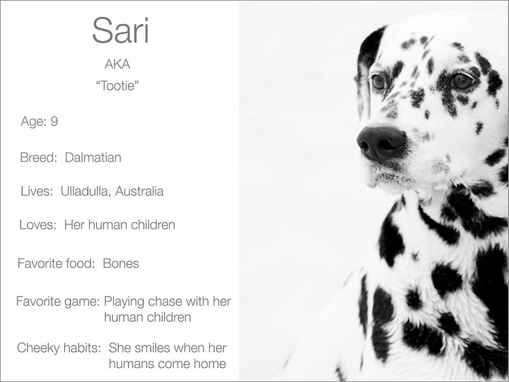 Sari profile  Kristie Lee Photographer