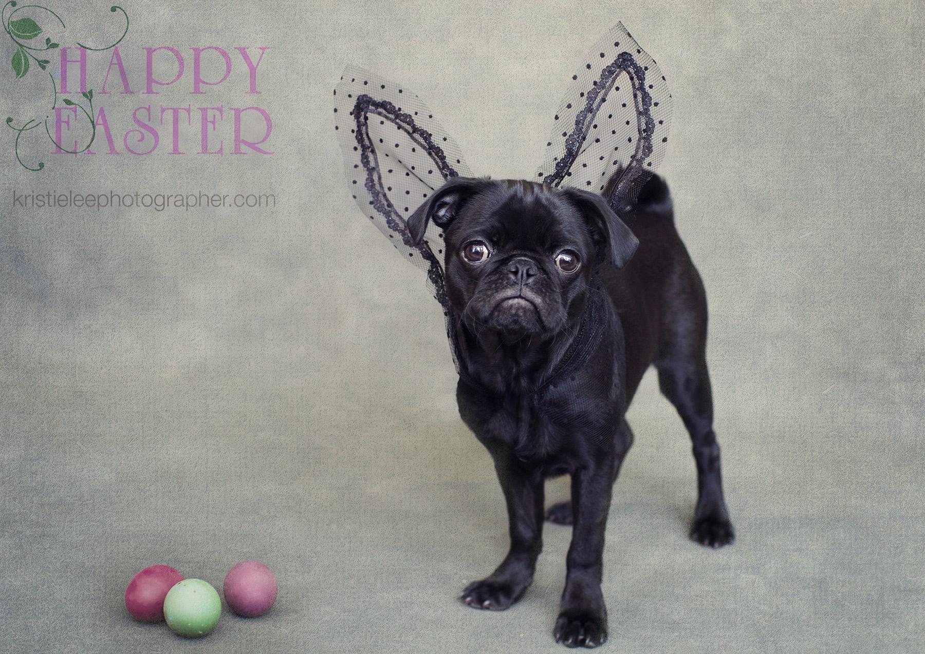 Happy Easter Kristieleephotographer low