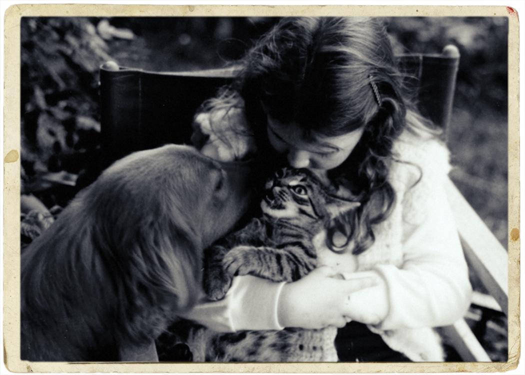 Kristie lee & gemma tiger copy