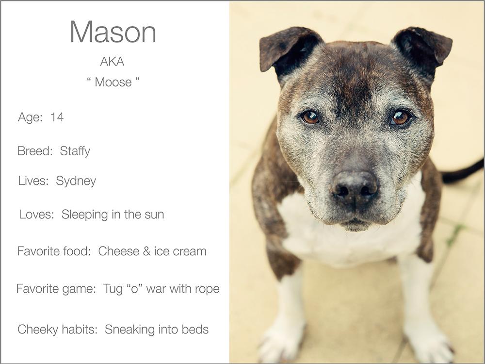 profile Mason Kristie Lee Photographer