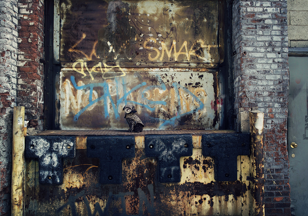 Lac- 058 Kristieleephotographer