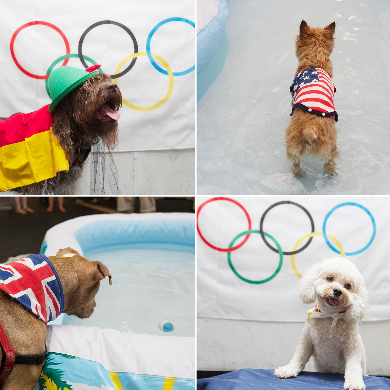 olympics 4-005