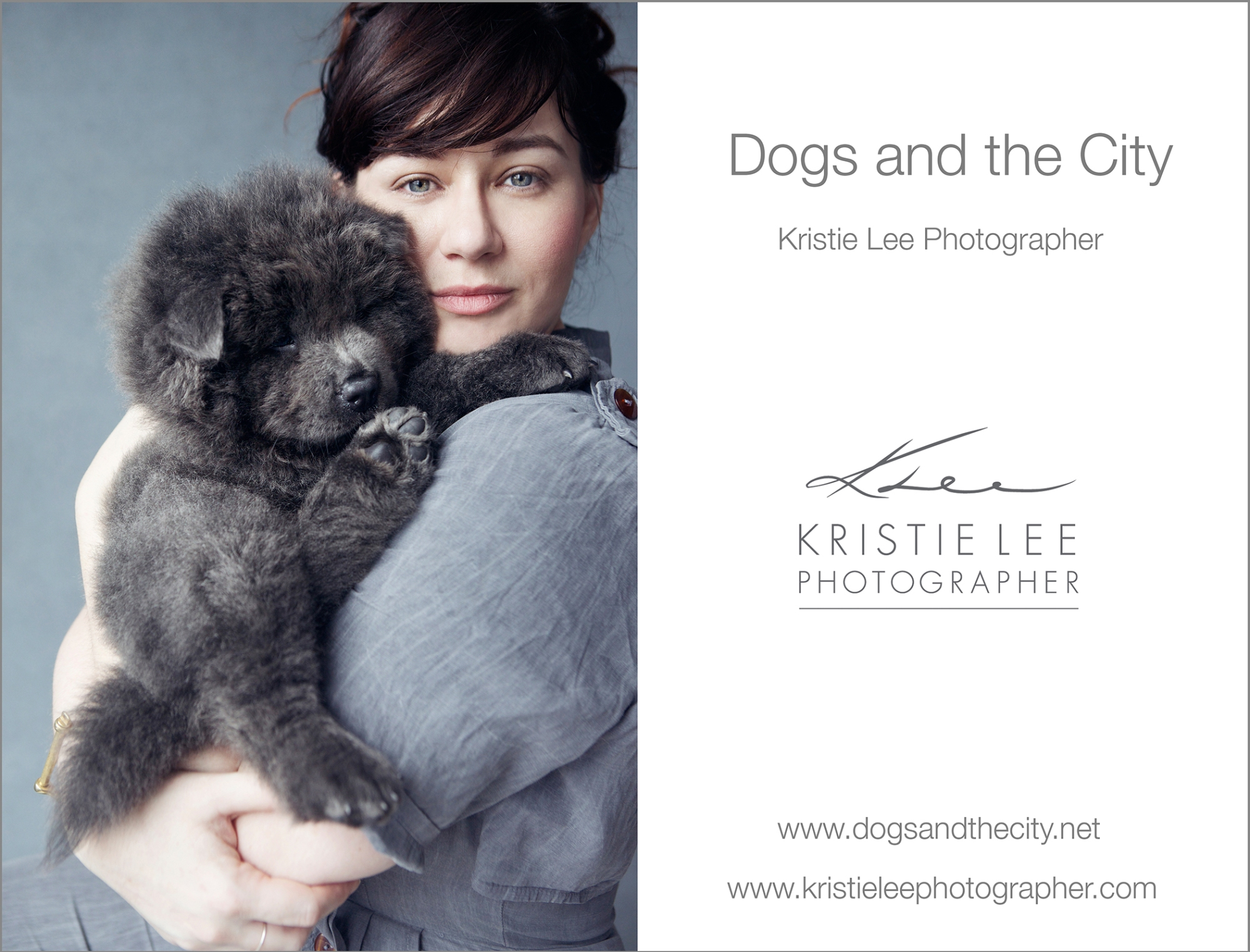 barry-dogs-and-the-city-kristie-lee-photographer
