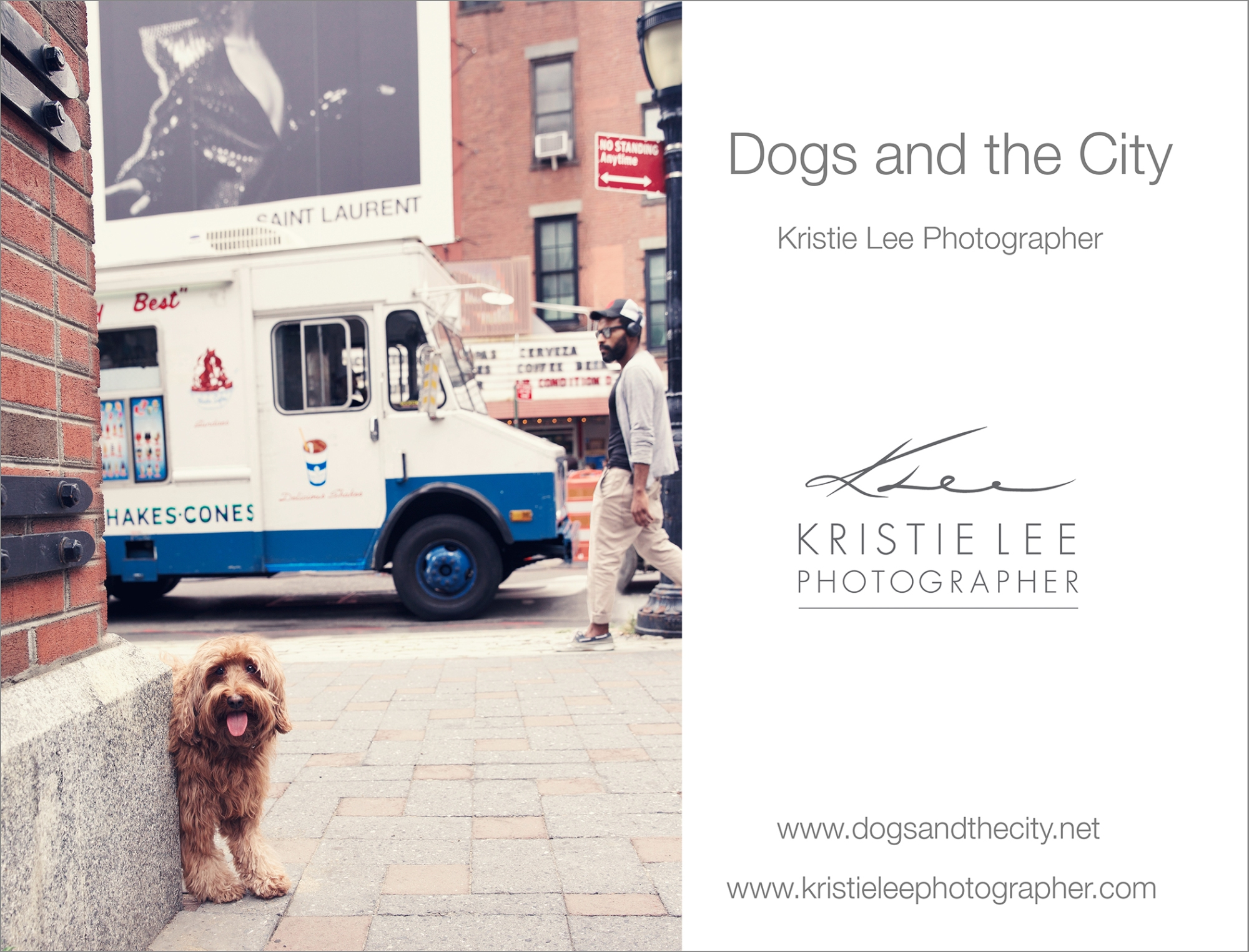 dogs_and_the_city kristie_lee_photographer